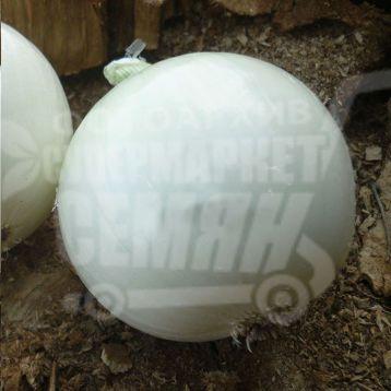 Оризаба F1 семена лука репчатого белого (Seminis)