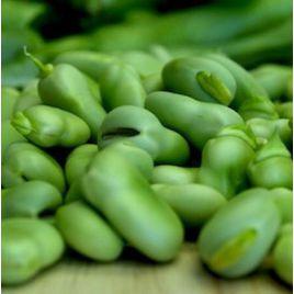 Дольче семена боба овощного (Anseme) НЕТ СЕМЯН