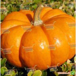 Вест семена тыквы (Lark Seeds)