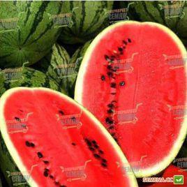 Астрахан F1 семена арбуза тип Кримсон Свит среднеспелого 80 дней 10-12 кг (Syngenta)
