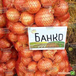 Банко семена лука репчатого позднего 115-120 дн (Syngenta)