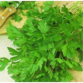 Комунне 2 семена петрушки листовой (Hortus)
