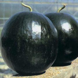 Шуга Беби семена арбуза (Гавриш)