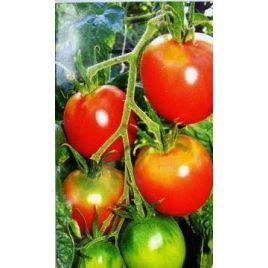 Де барао розовый семена томата индет. среднего слив. 60-70 гр. роз. (Элитный ряд)