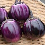 Виолетта семена баклажана (Элитный ряд)