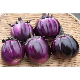 Виолетта семена баклажана среднеспелого 120 дн. 700 гр. окр. (Элитный ряд)