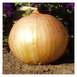 Экстра Эрли Голд F1 семена лука репчатого озимого раннего 240 дн 200-250 гр (United Genetics)