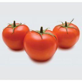 Калифорния (INX 1624 F1) семена томата дет. раннего 95-100 дн. окр. 130-140 гр. (Innova Seeds)