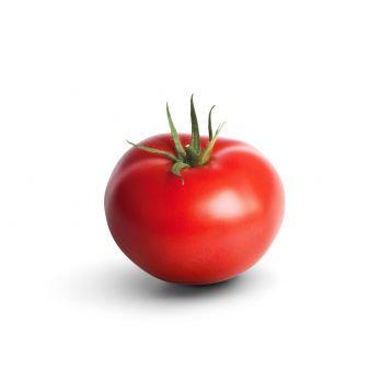 Адмиро F1 семена томата индет. (DRS-Seminis)