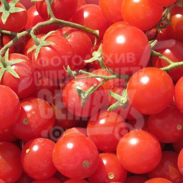 Сомма F1 семена томата дет. черри ультрараннего 85-90 дн. окр. 12-15 гр. красный (Nunhems) НЕТ ТОВАРА