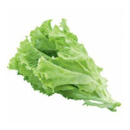 салат батавия абрек