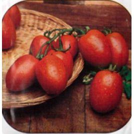 Рио гранде семена томата дет. (Rem seeds)