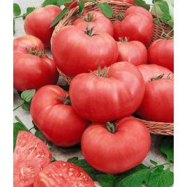 Розмакс F1 семена томата индет. розового (Гавриш)