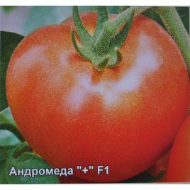 Андромеда F1 семена томата дет. раннего окр. 120-130г (Элитный ряд)