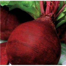 Красный шар семена свеклы столовой окр. (Свитязь)