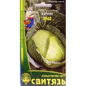 Яна семена капусты б/к поздней (Свитязь)