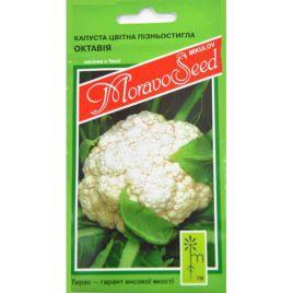 Октавиан (Октавия) семена капусты цветной средней 85-90 дн бел. (Moravoseed)
