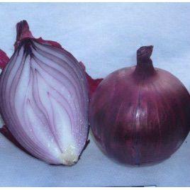 Гермес семена лука репчатого красного (Гавриш)