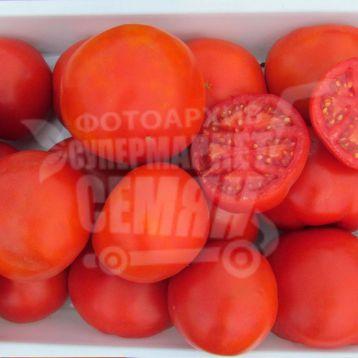 Шеди Леди F1 семена томата дет. 102-108 дн. окр. 200-220 гр. (Bayer Nunhems)
