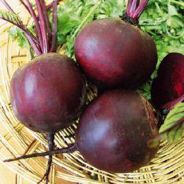 Бикорес семена свеклы столовой (Hortus)