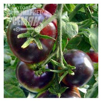 Биг Блек семена томата дет. черного (Euroseed)