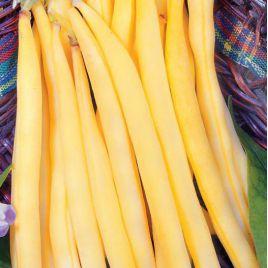 Полька семена фасоли спаржевой желт. (Польша) НЕТ ТОВАРА