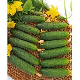 семена огурца марьина роща f1