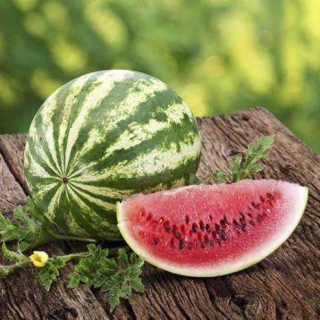 АУ Продюсер семена арбуза тип кр.св. среднего 75-80 дней 8-12 кг овал. (SAIS)