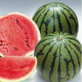 Силвиа F1 семена арбуза тип Кримсон Свит раннего 65-70 дней 10 кг (Гавриш) НЕТ ТОВАРА