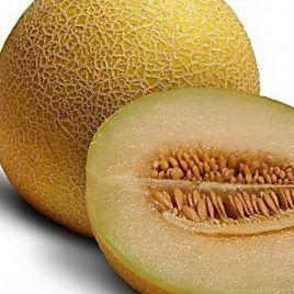 Ортолани семена дыни типа Ананас (Euroseed)
