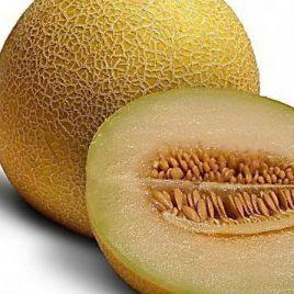 Ортолани семена дыни тип Ананас ранней 70 дн. 1,5-2 кг овал. (Euroseed) НЕТ ТОВАРА
