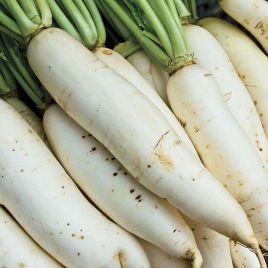 Белоснежка семена редиса белого цилинд. 20-25 дн. (Свитязь) НЕТ ТОВАРА