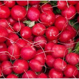 Красный Гигант семена редиса 30 дн. (Hortus)