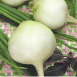 Одесская 5 семена редьки (Свитязь)