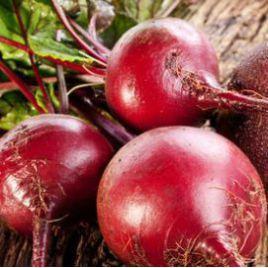 Детройт Дарк Ред семена свеклы столовой средней 80 дн. окр. (Innova Seeds)