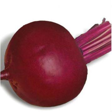 Детройт семена свеклы столовой (Griffaton)