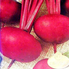 Эгипос семена свеклы столовой ранней прип.-окр. (Hortus)