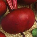 Эгипос семена свеклы столовой (Свитязь)