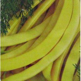Богема семена фасоли спаржевой желт. (Свитязь) НЕТ ТОВАРА