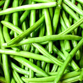 Колибри семена фасоли спаржевой зел. (GL Seeds)