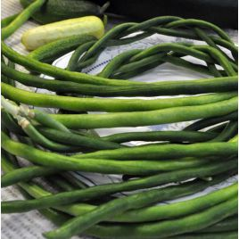 Макаретти семена вигны 60-65дн. зел. (Гавриш) НЕТ СЕМЯН