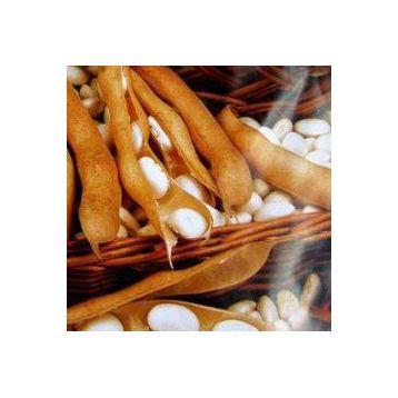 Эурека семена фасоли (Свитязь)