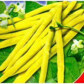 Чародейка семена фасоли спаржевой желт. (GL Seeds)