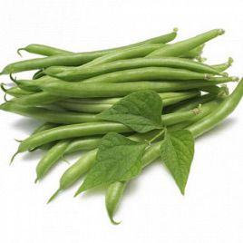 Ява зеленая семена фасоли спаржевой (GL Seeds)