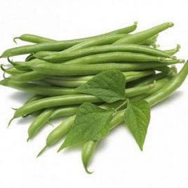 Ява зеленая семена фасоли спаржевой зел. (GL Seeds) НЕТ ТОВАРА
