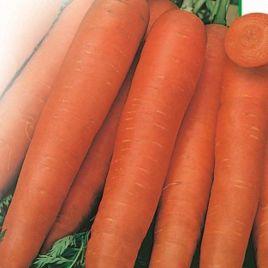 Флайови семена моркови Флакке поздней 155-175 дн. (Свитязь) НЕТ ТОВАРА