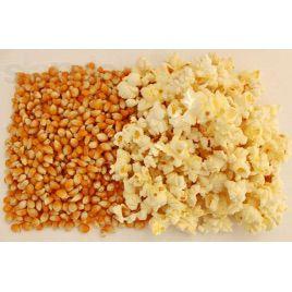Кукурудза розлусна семена кукурузы лопающейся (Свитязь)