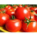Загадка семена томата дет (Элитный ряд)