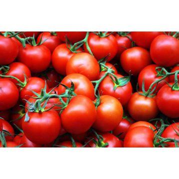 Иришка семена томата дет. (Свитязь)