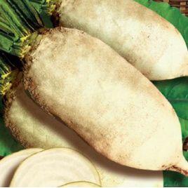 Центауер Поли семена свеклы кормовой (GL Seeds) НЕТ ТОВАРА